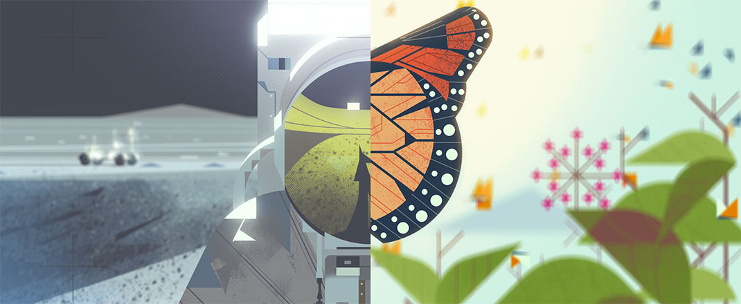 visu-nature-29