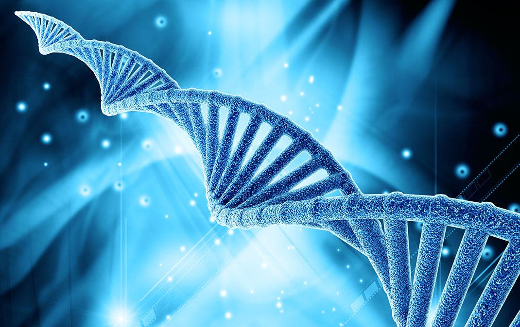 ADN-shutterstock-2