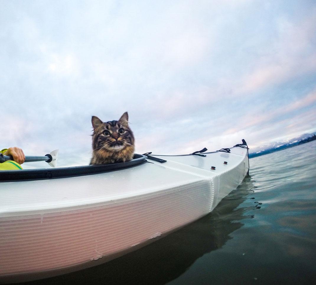 chat-kayak-5