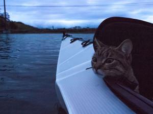 chat-kayak-6