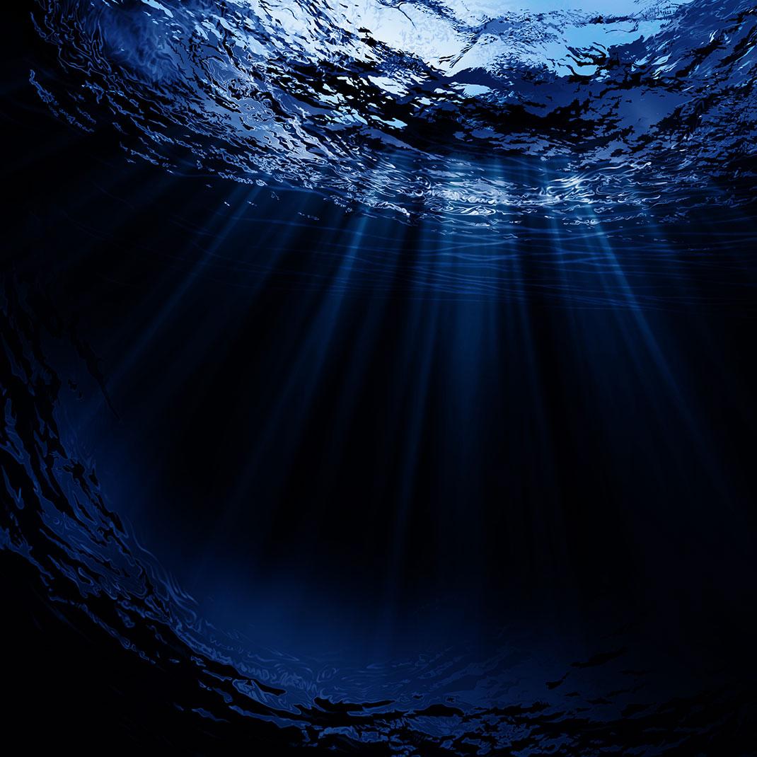Fond-océanique-shutterstock-1