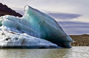 Glacier-Tasman-17
