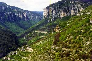 Gorges-du-Tarn-14