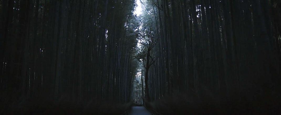In-Japan-15