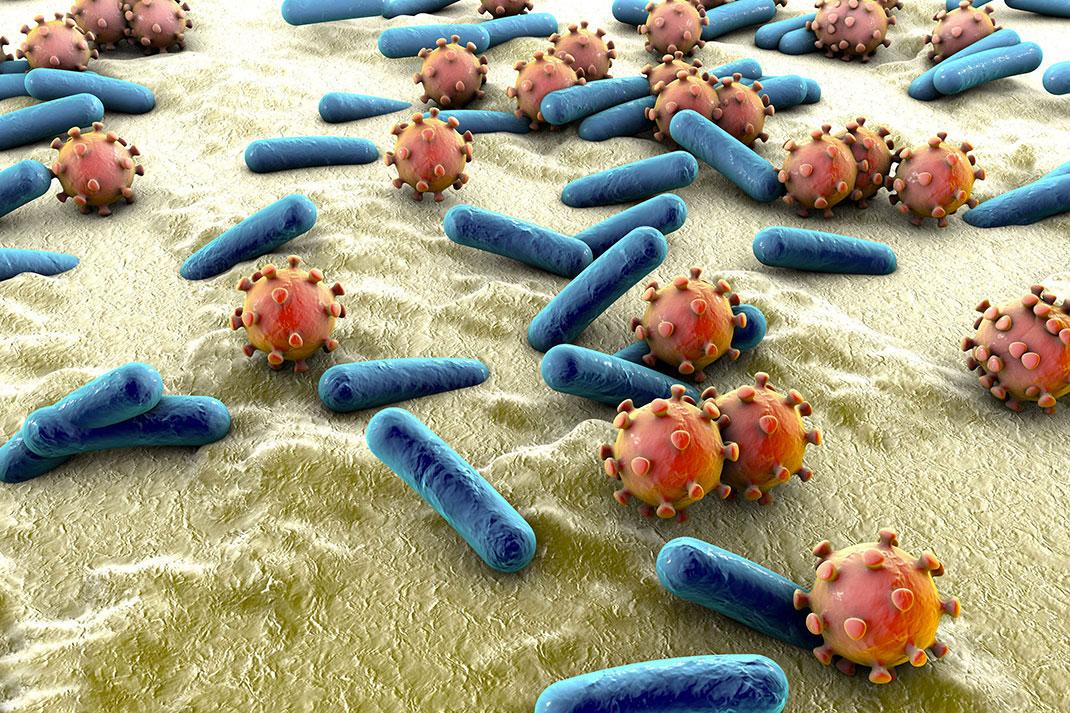 Microbes-shutterstock