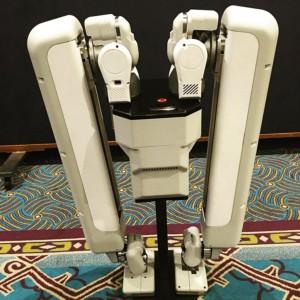 Robot-schaft