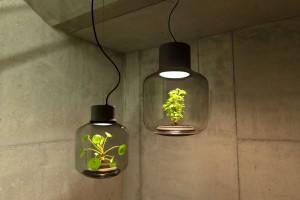 lampes-luminaire-terrarium-1