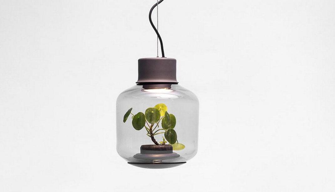 lampes-luminaire-terrarium-12