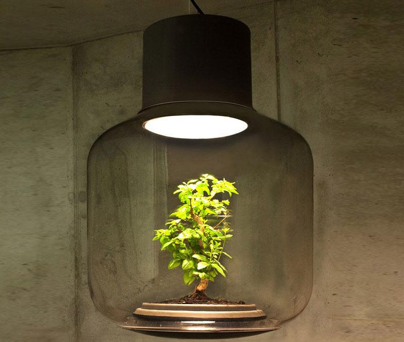 lampes-luminaire-terrarium-14