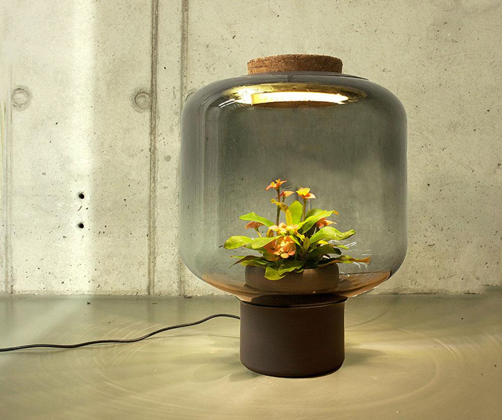 lampes-luminaire-terrarium-9
