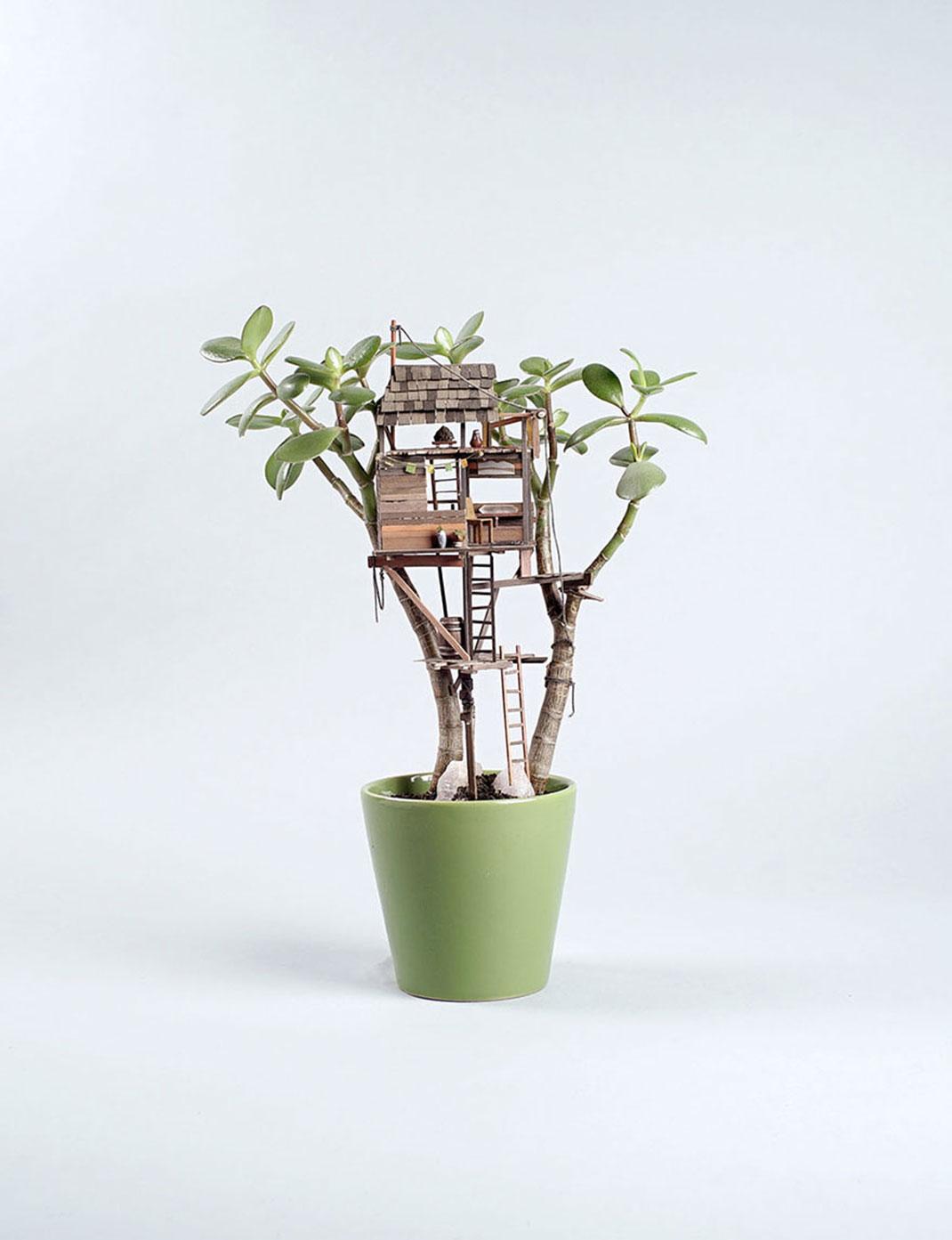 mini-maison-plante-17