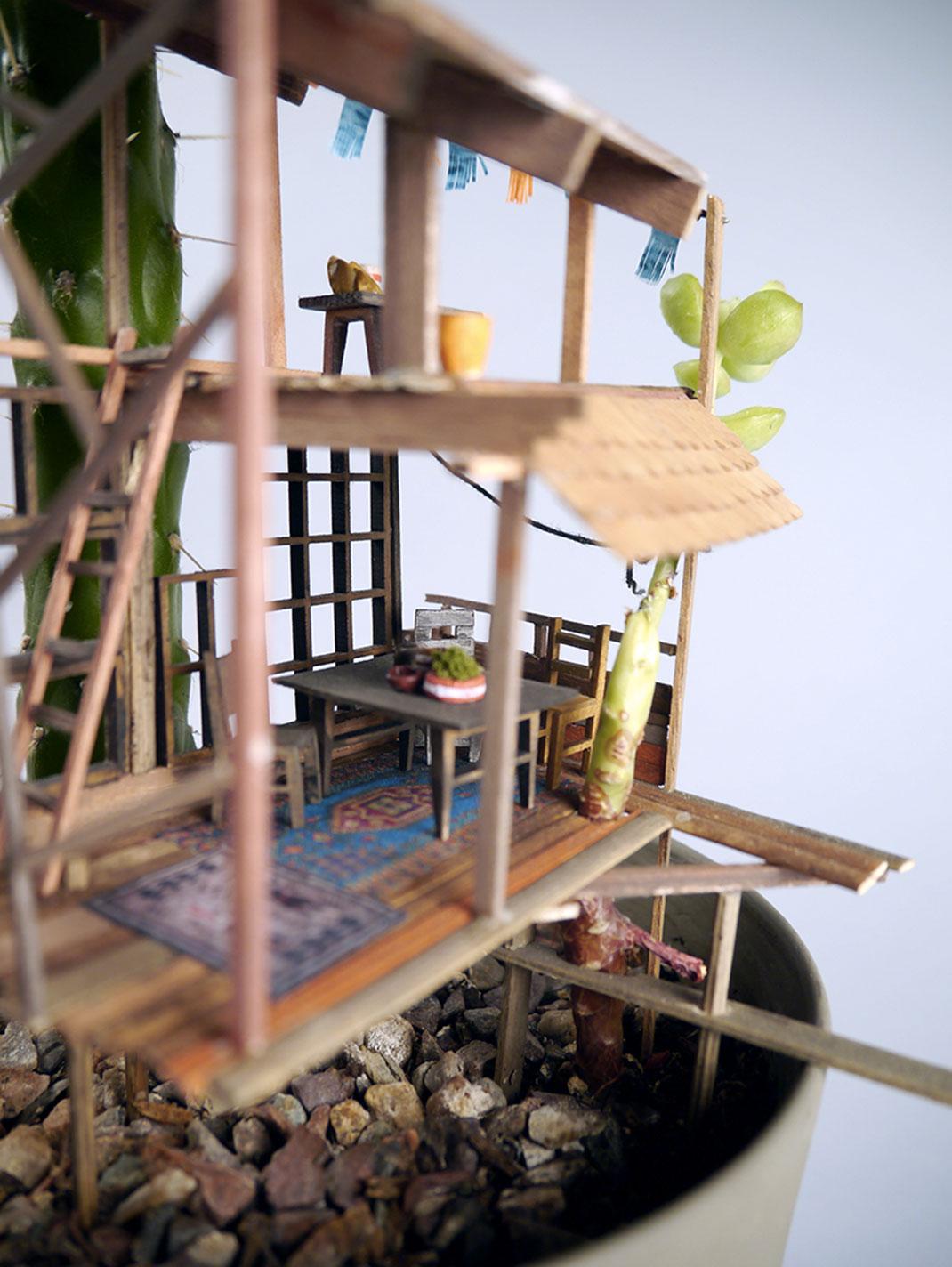 mini-maison-plante-3