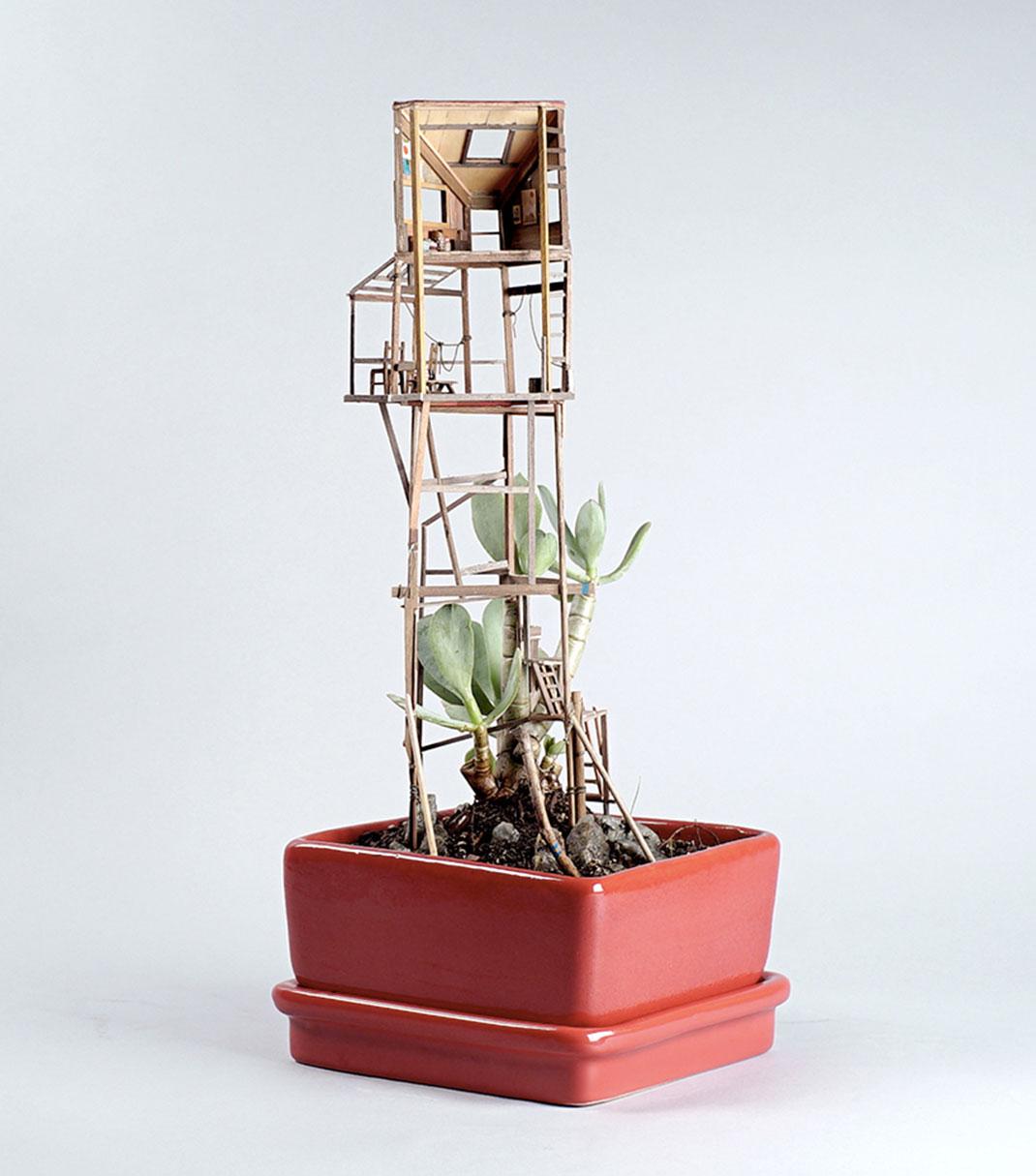 mini-maison-plante-4