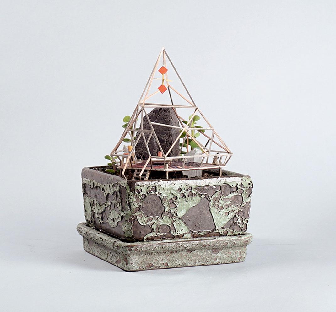 mini-maison-plante-5