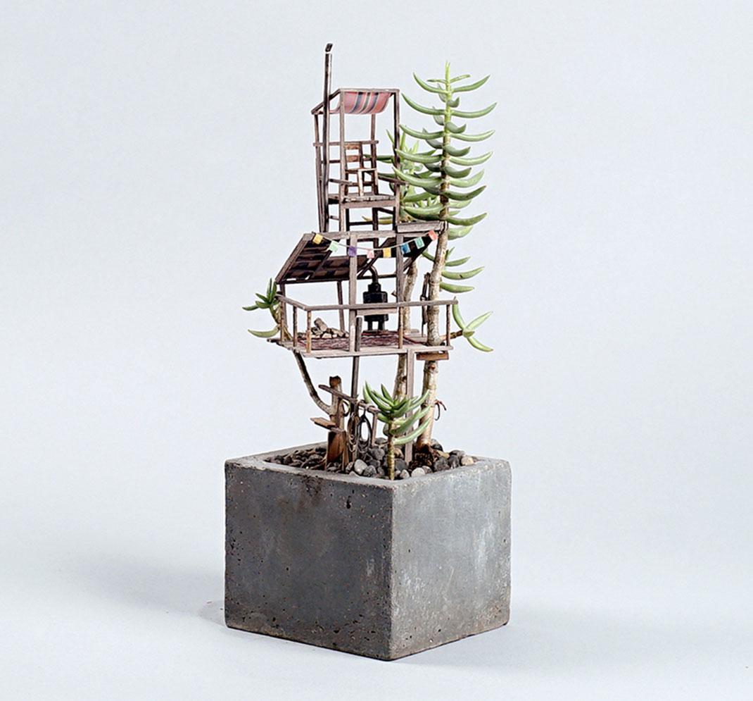 mini-maison-plante-7