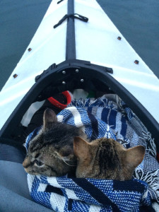chat-kayak-2