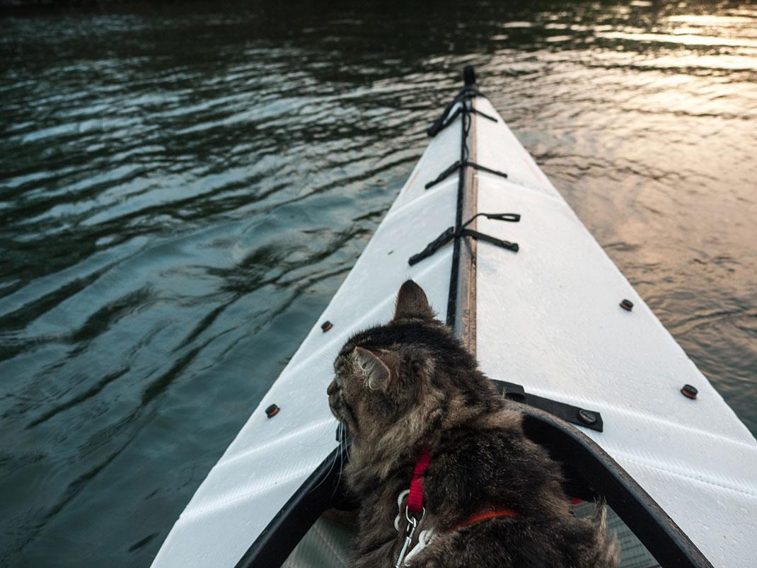 chat-kayak-3