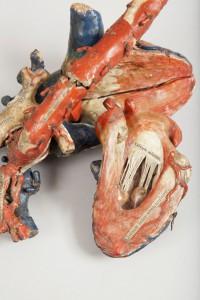 10-modele-anatomique-papier-mache