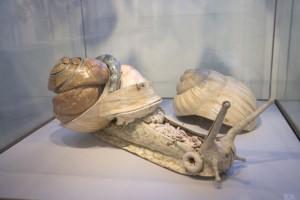 20-modele-anatomique-papier-mache