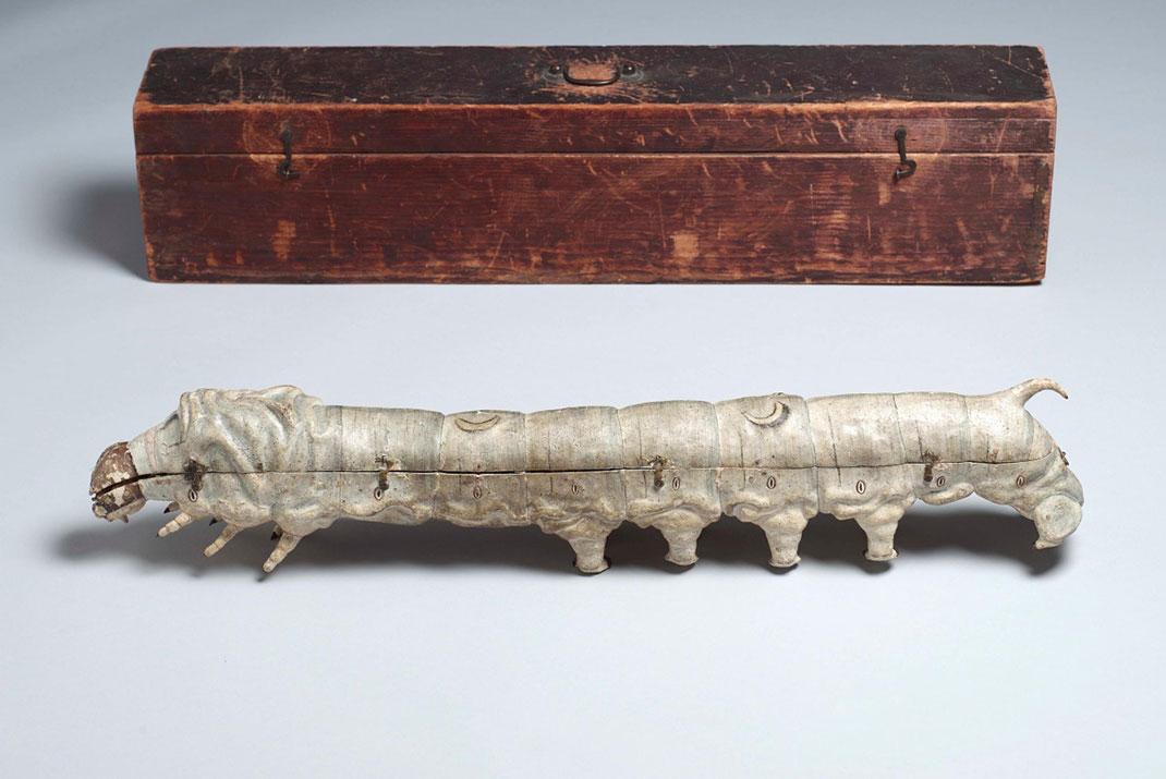 27-modele-anatomique-papier-mache