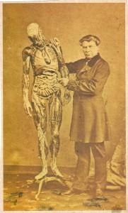 32-modele-anatomique-papier-mache