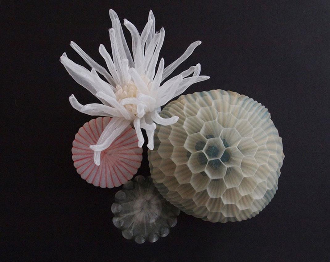 7-bijoux-mer