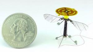 Drone-volant-1