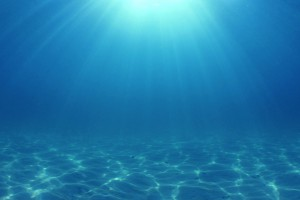 Le fond d'un océan via Shutterstock