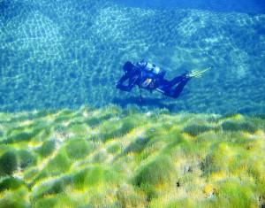 Plongee-soumarine-34