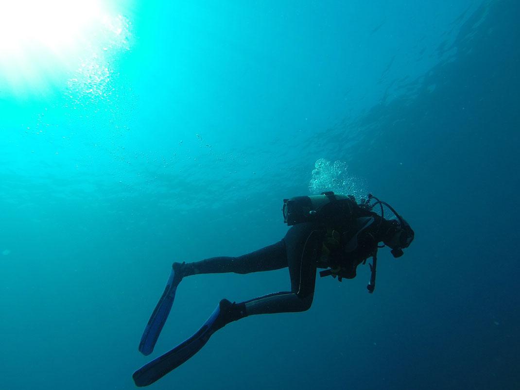 Plongée-sous-marine-25