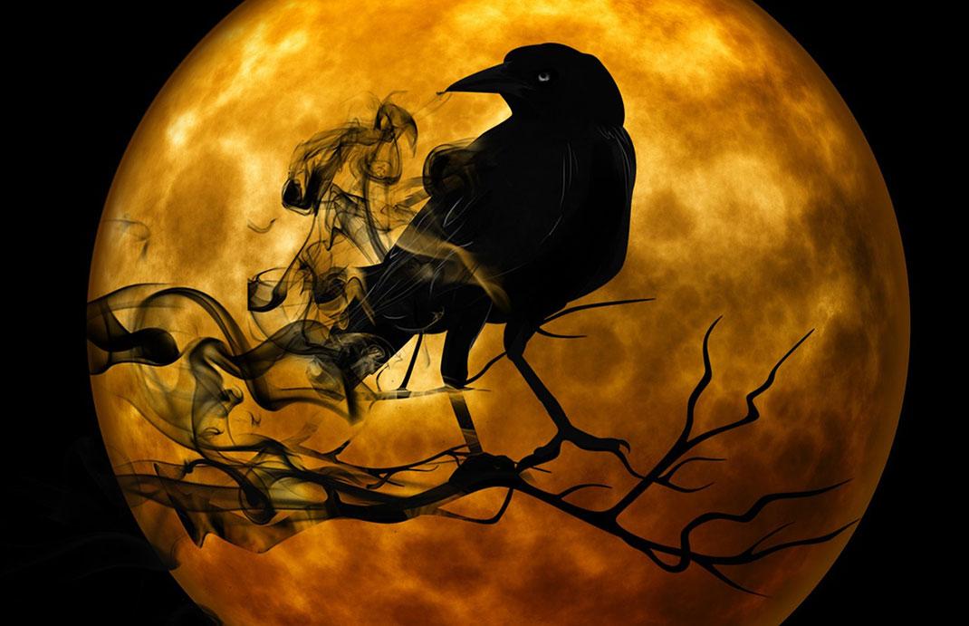corbeau-méchant-fumee-6