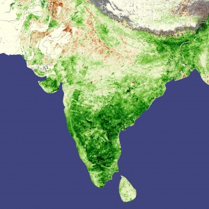 Couverture forestière en Inde