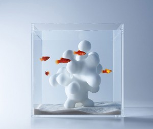 haruka-misawa-aquarium-1