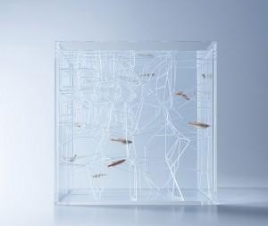 haruka-misawa-aquarium-3