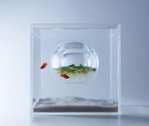 haruka-misawa-aquarium-4