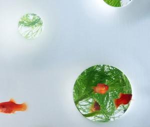 haruka-misawa-aquarium-7