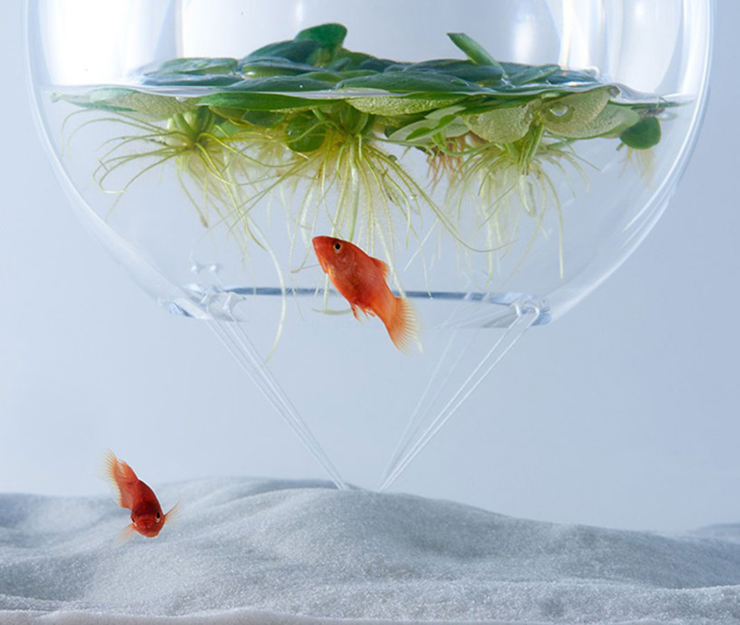 haruka-misawa-aquarium-9
