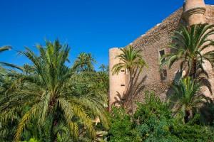 La palmeraie d'Elche via Shutterstock