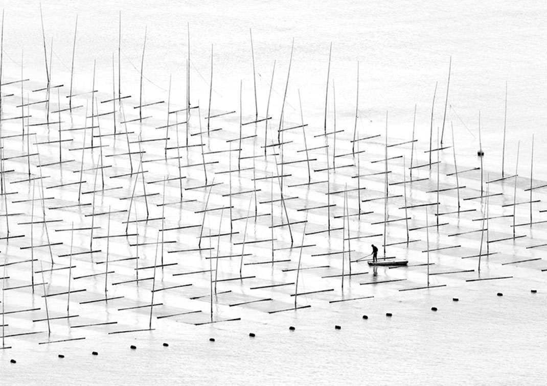 Agriculture de mer de Tugo Cheng, Chine