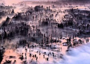 Brouillard à Cemoro Lawang d'Achmad Sumawijaya, Indonésie