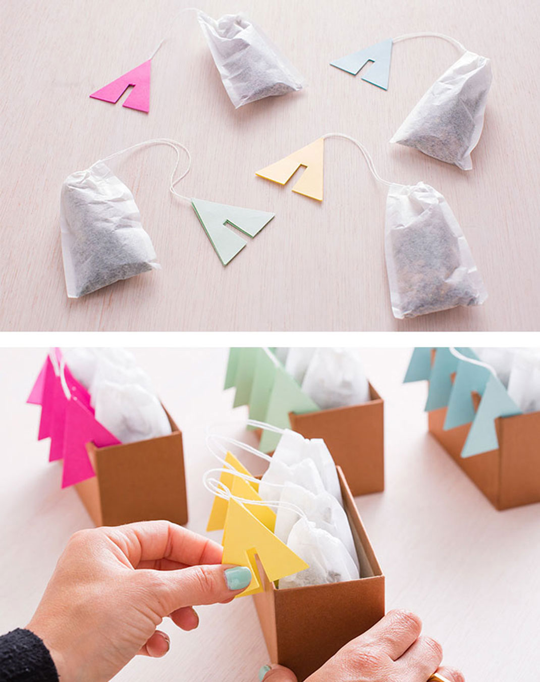 sachet-the-creation-40