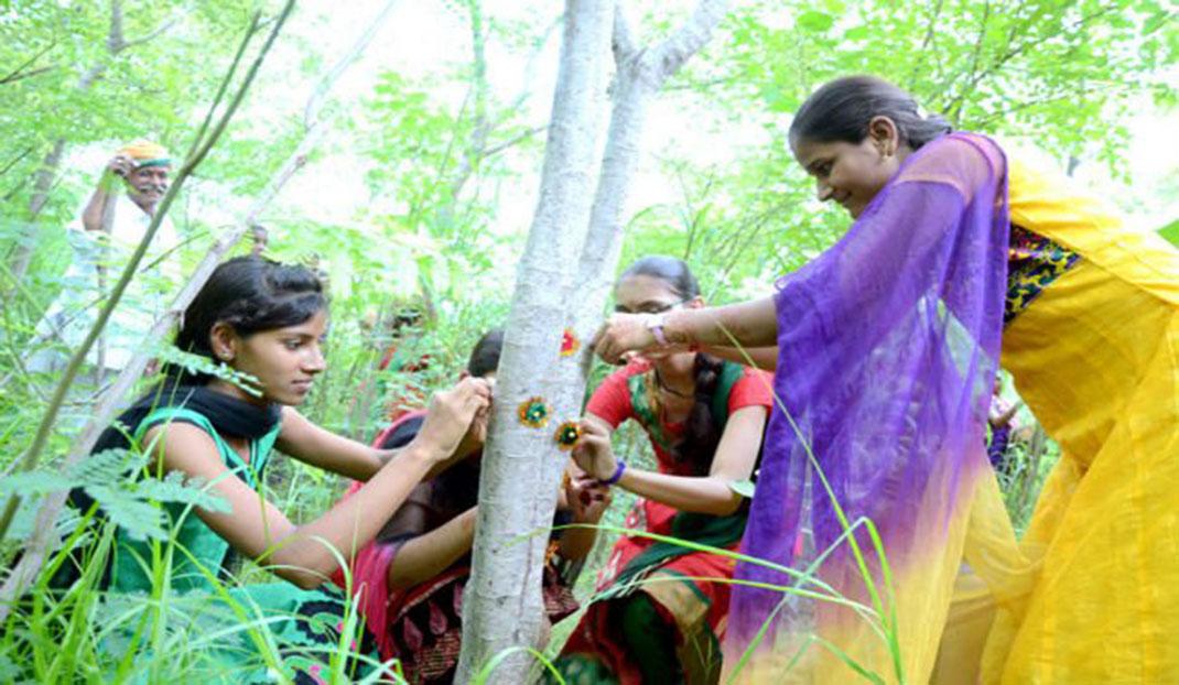 village-indien-arbres-4