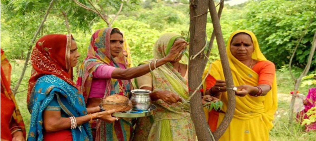 village-indien-arbres-6
