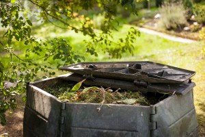 Une boîte à compost via Shutterstock
