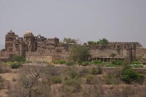 Chittorgarh-fort-11
