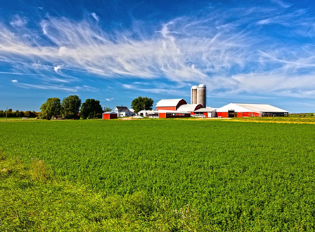 Une ferme via Shutterstock
