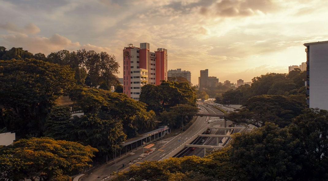 Lion-city-2