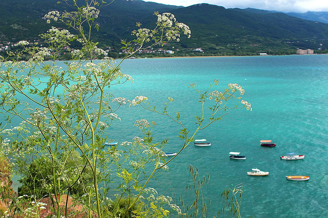 Ohrid-Macedoine-22