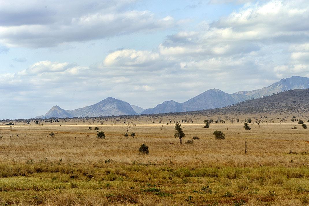 Un sol africain via Shutterstock