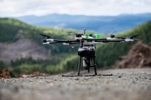 drone-planter-arbres-2